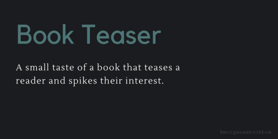 book teaser