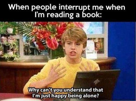 interrupt pic 2