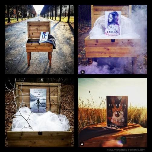Instagram Book Box Features