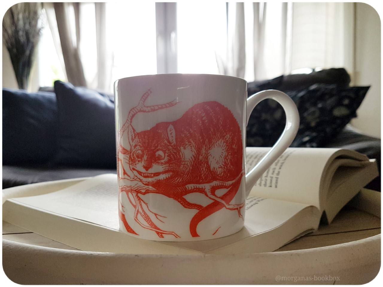 mug cat